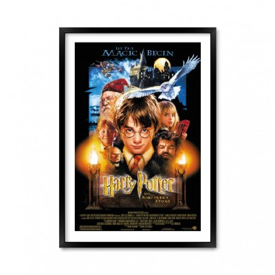 Harry Potter and sorcerer's stone.