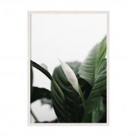 Цветы 05.