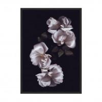 Flower Dream N01.