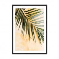 Пальма листья.
