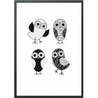 Постер BIRDS