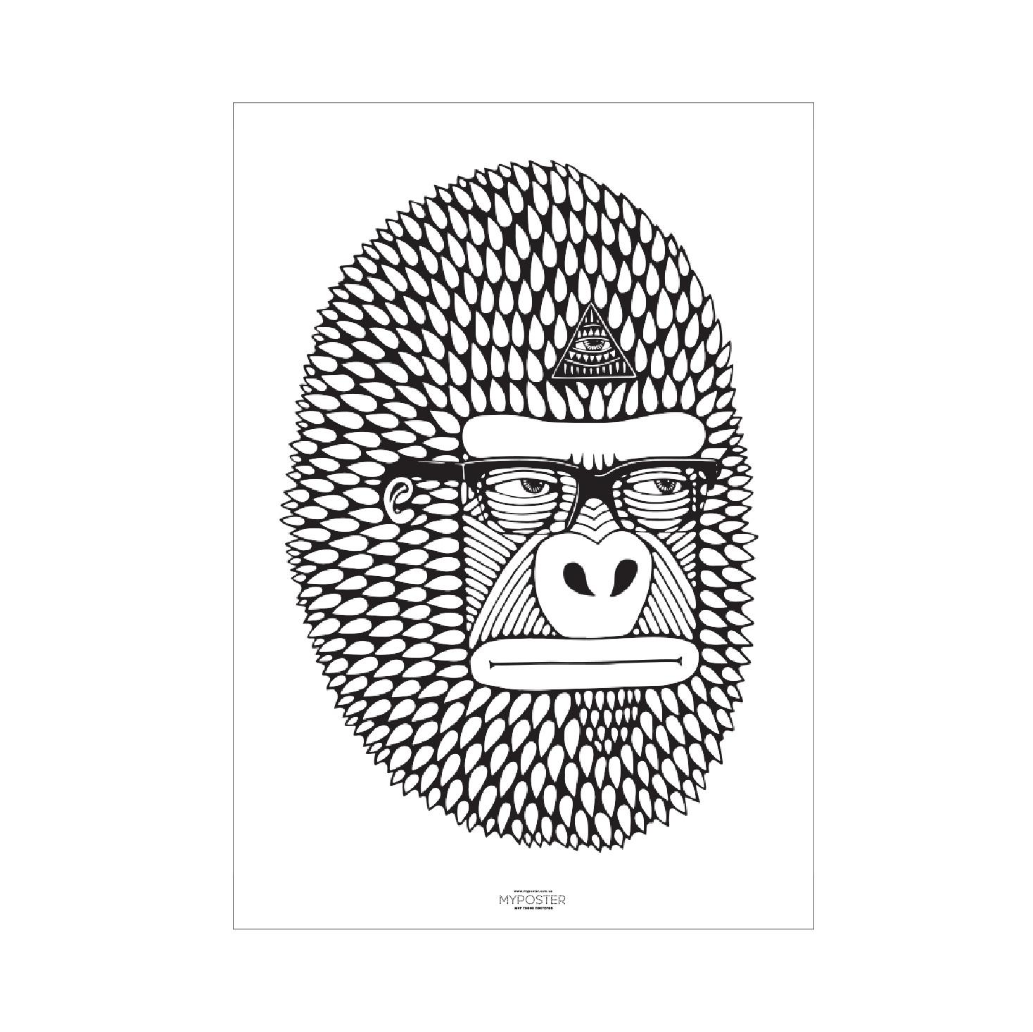 купить раскраску Monkey магазин мой постер